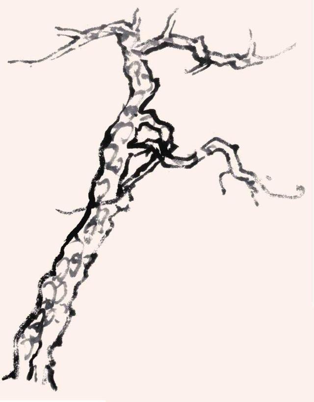 大树怎么画简笔画松树