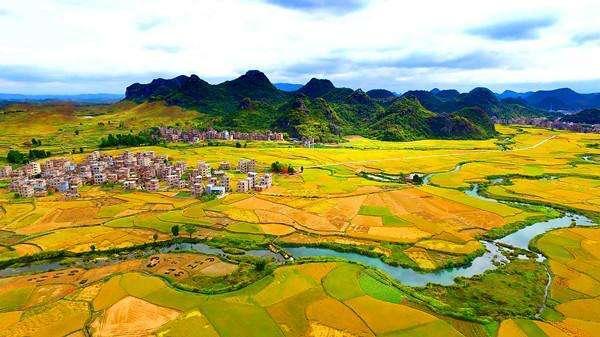 """杨凌弘本农业:以""""做好中国健康富硒农产品""""为使命"""