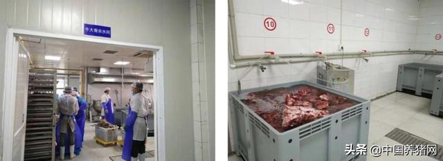 冷冻肉还原成新鲜肉的工艺技术