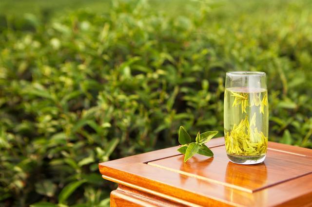 十大绿茶价格表