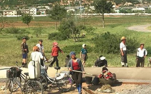朝鲜农民很幸福,不用交房租,看病不用钱,有工资领收入高过教授