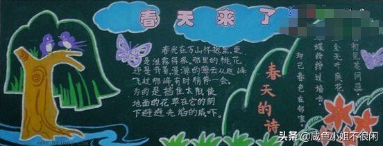 黑板报花朵粉笔画