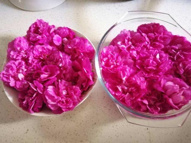 4种花用处多,摘下花瓣泡茶喝,还能清热解暑