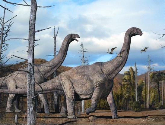世界最大恐龙排行榜,易碎双腔龙体重可达220吨-第4张图片-IT新视野