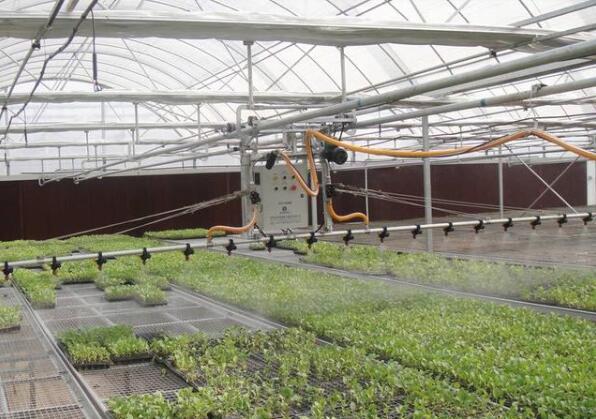 蔬菜大棚建设每亩造价是多少?