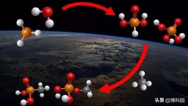 dna分子结构