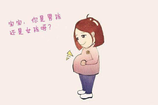 第一胎生女孩几率大的生肖