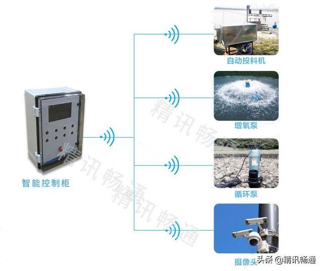 什么是智慧水产养殖智慧水产养殖设备有哪些