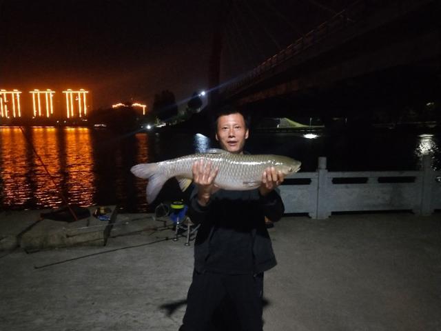 夏季夜钓草鱼,注意这些老套路,钓一次爽一次,草鱼连竿没难度