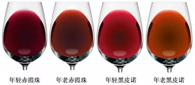 教你如何通过葡萄酒颜色判断年份