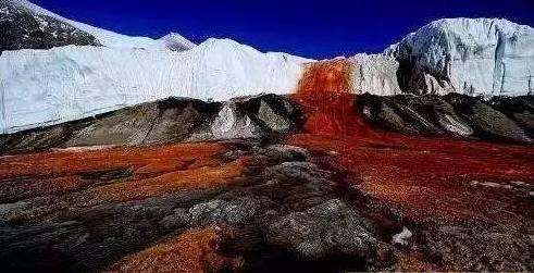 关于南极半岛下起血红色的雪科学的解释