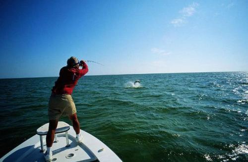 钓鱼基本功,你学了吗?(上)