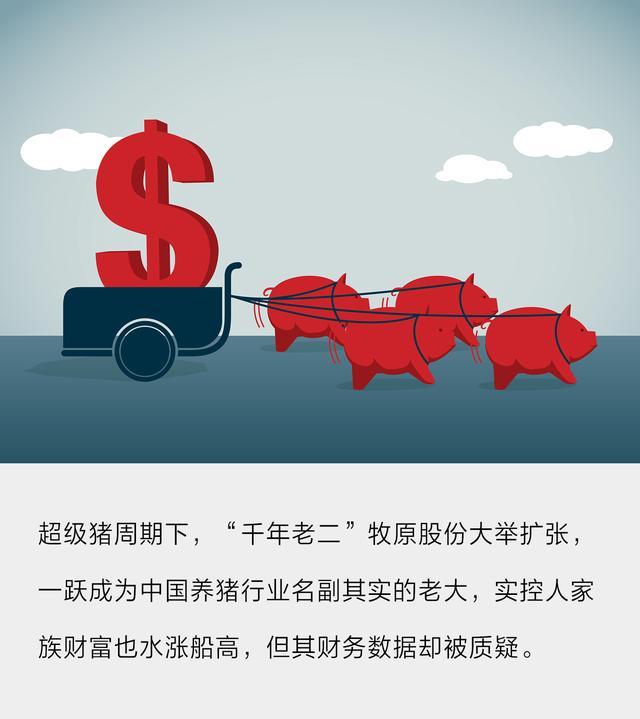 河南千亿首富豪赌养猪场:身家超雷军,半年卖了600多万头猪