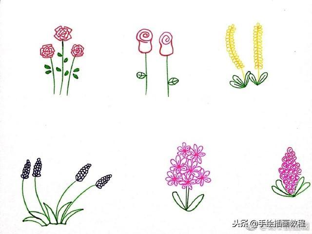 一组植物花卉简笔画,简单明了很清新~