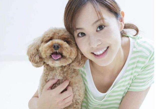 常见小型宠物狗品种