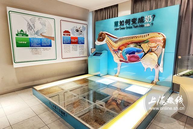 """魔都100:会移动的""""中国乳业百科全书""""揭晓牛奶不得不说的秘密"""