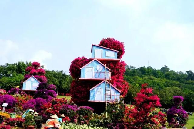 广州塔最佳观光时间