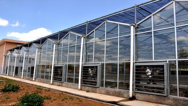 3456平方米的玻璃温室大棚设计图纸造价解析,玻璃温室大棚造价