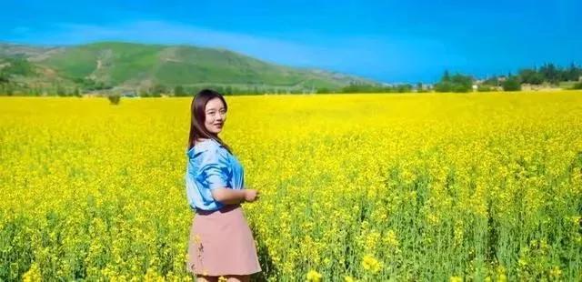 还有10天,宁夏最美油菜花海将要盛放!
