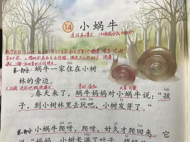 小蜗牛卡通图片