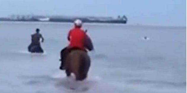 三男子骑马冲入海中救下男孩 网友:像古代大侠