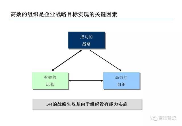 上市公司组织架构图
