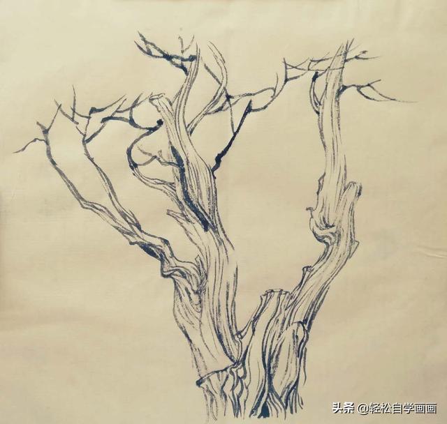 松树怎么画