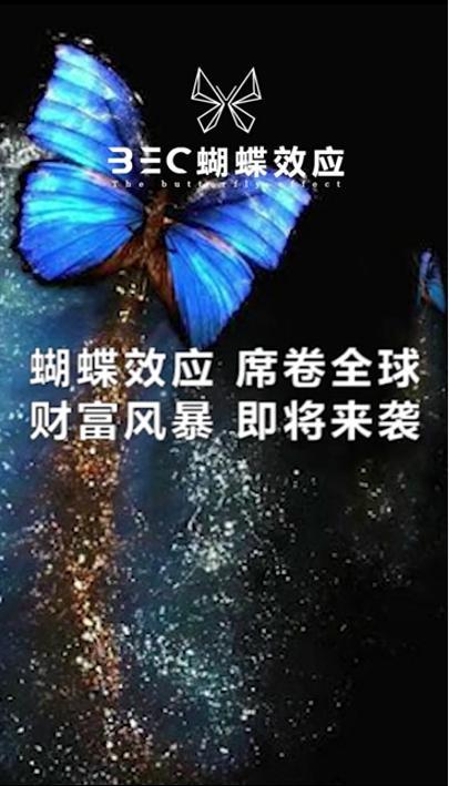 The ButterFly effect 蝴蝶效应受币圈热捧