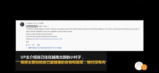 抄袭之风太猖狂,律师却称李子柒维权难度较大