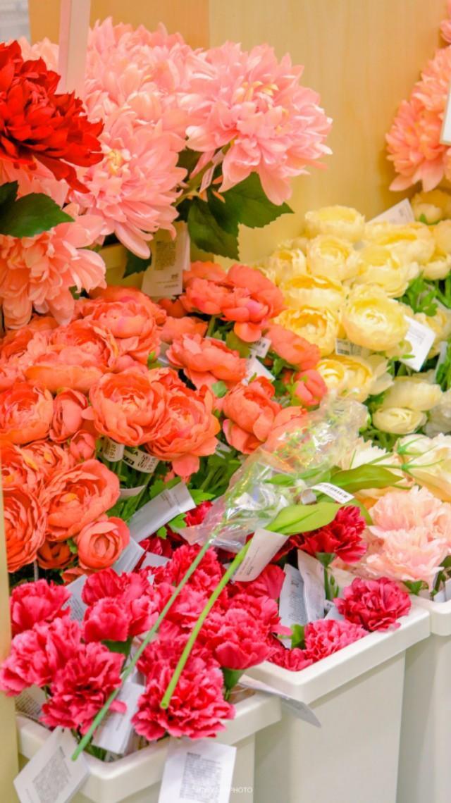 手机壁纸一支花朵唯美