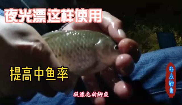 钓鱼夜光棒正确使用图