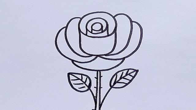 花朵简笔画幼儿园