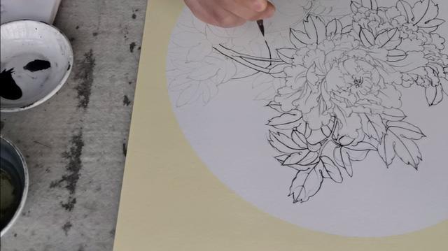 工笔牡丹白描底稿画法