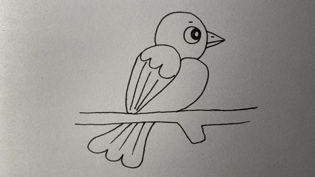 小鸟怎么画可爱