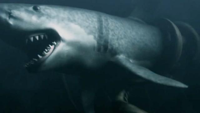 """远古时期的海洋生物""""奇虾""""!史诗级纪录片带你走... _网易视频"""