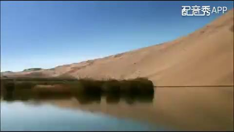沙漠全部小说_沙漠作品集 - 166小说网