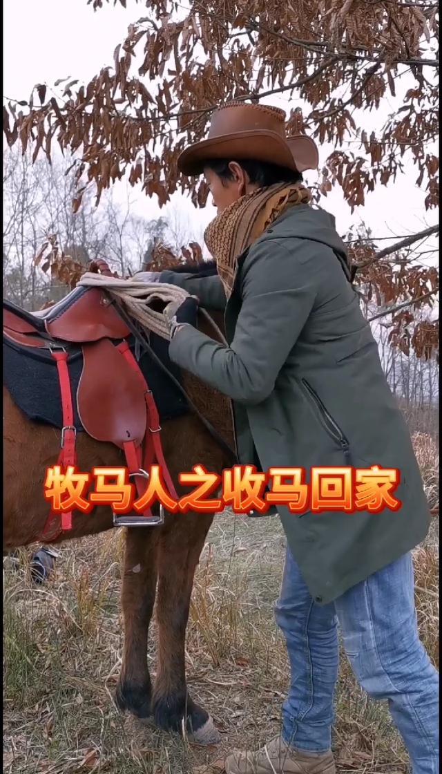 体育+旅游之到内蒙古去骑马--体育--人民网