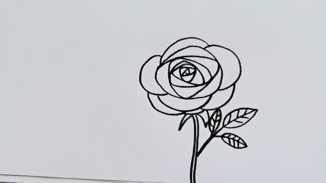 玫瑰花简笔画大全及画法步骤_玫瑰花-简笔画大全