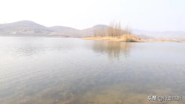 钢城大汶河国家湿地公园-济南市钢城区钢城大汶河国家湿地公...