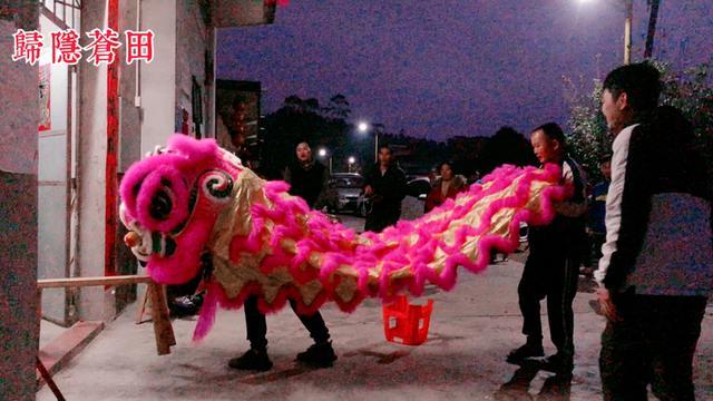 深圳舞狮队,深圳舞狮,专业舞狮子,开业舞狮表演_九九信息网
