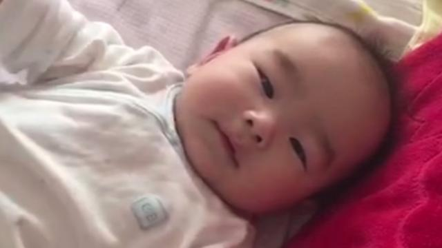 宝宝5个月的照片