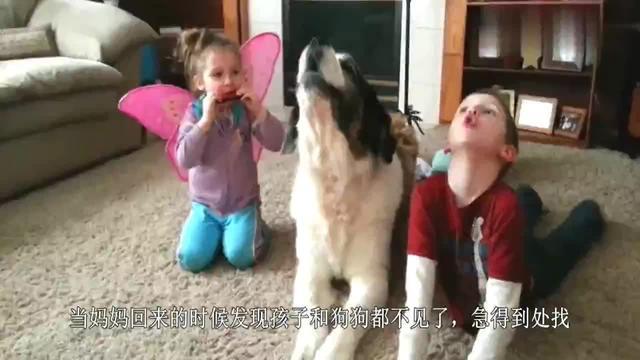 三岁女孩和狗狗同时消失天后狗狗咬着女孩的头绳回来了
