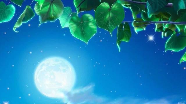 中秋明月寄相思图片
