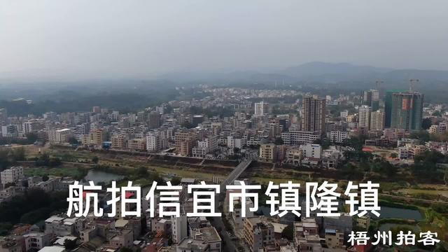 镇隆荔枝标志