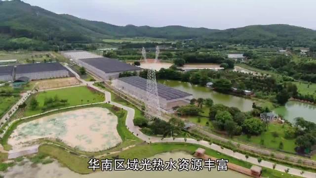 适合华南地区专用的锯齿型薄膜温室大棚结构 #薄膜温室