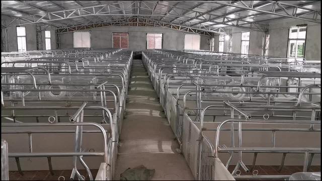 母猪产床安装步骤图片