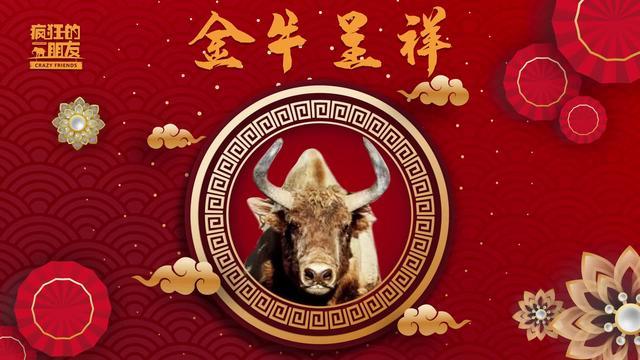 西藏牦牛高清手机壁纸