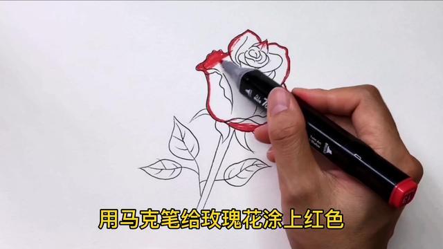几分钟玫瑰花简笔画教程 简单几笔竟如此漂亮!(喜欢的收了)