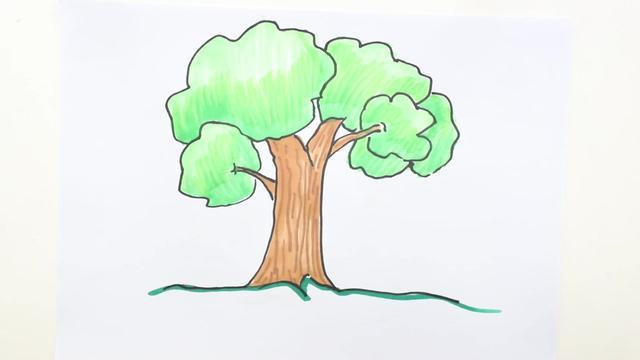 春天大树怎么画简单又好看涂颜色_巧巧简笔画