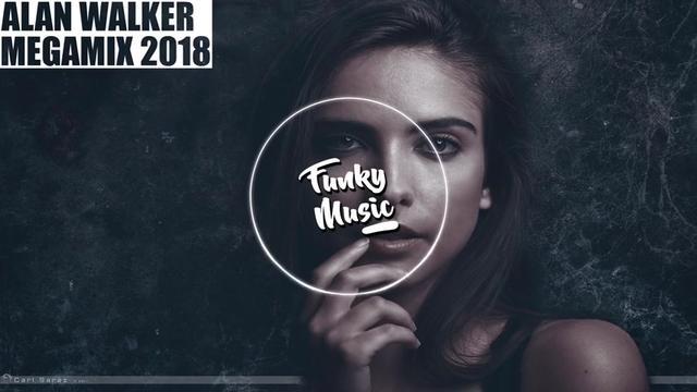 Alan Walker - 歌手 - 网易云音乐